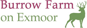 Burrow Farm Logo